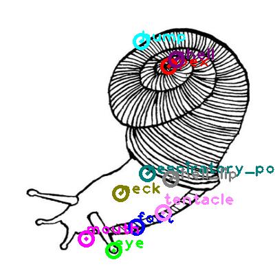 snail_0017.png