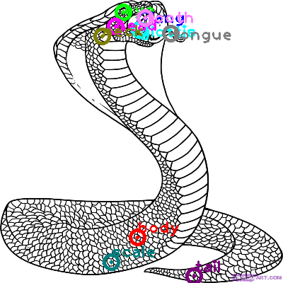 snake_0007.png