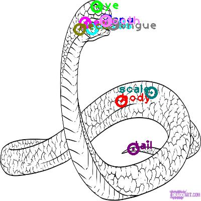snake_0010.png