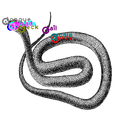 snake_0018.png