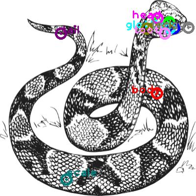 snake_0019.png