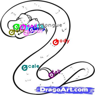 snake_0025.png