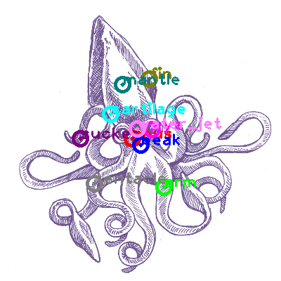 squid_0013.png