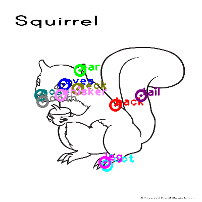 squirrel_0012.png