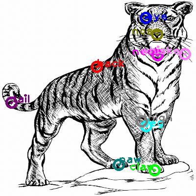 tiger_0021.png