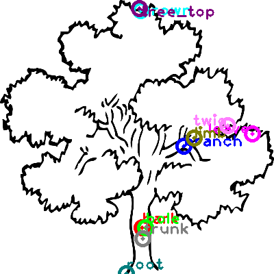 tree_0000.png