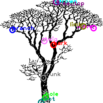 tree_0001.png