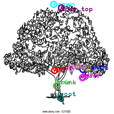 tree_0006.png