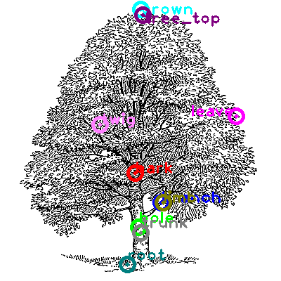tree_0007.png