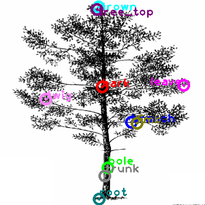 tree_0009.png
