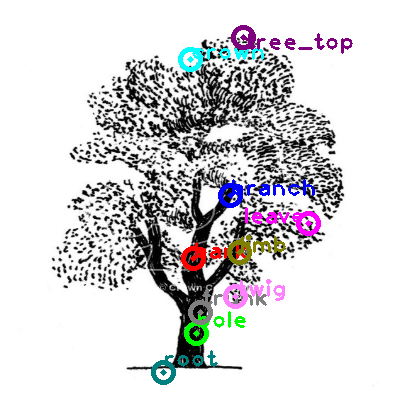 tree_0011.png