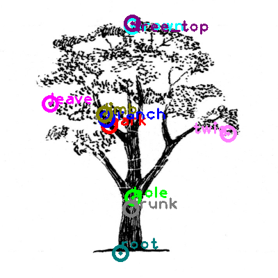 tree_0012.png