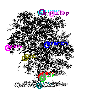 tree_0013.png