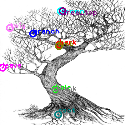 tree_0015.png
