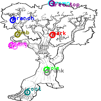 tree_0017.png