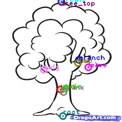 tree_0019.png