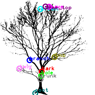 tree_0020.png