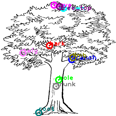 tree_0021.png