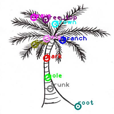 tree_0022.png