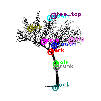 tree_0023.png