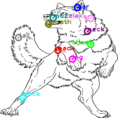 wolf_0023.png