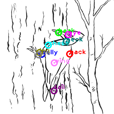 woodpecker_0013.png