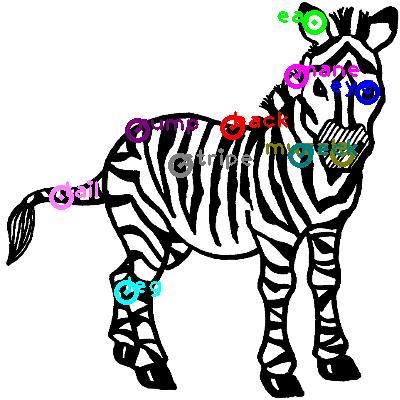 zebra_0002.png