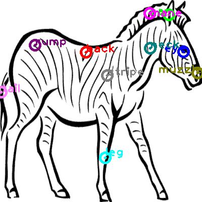 zebra_0010.png