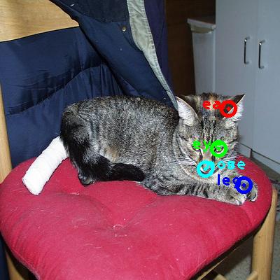 2008_000115-cat_0_ppm10.png