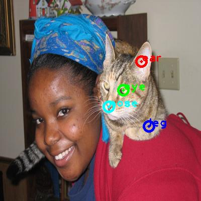 2008_000950-cat_0_ppm10.png