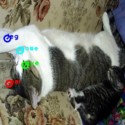 2008_001071-cat_0_ppm10.png