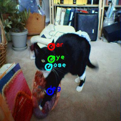2008_001078-cat_0_ppm10.png