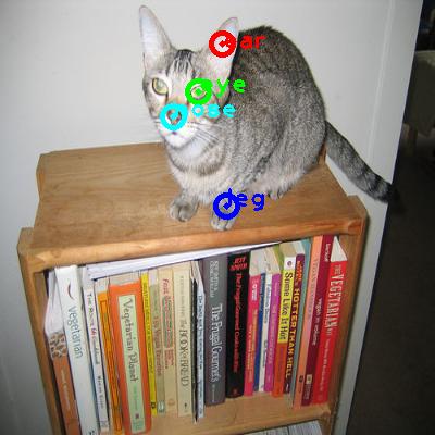 2008_001640-cat_0_ppm10.png