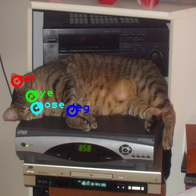 2008_001741-cat_0_ppm10.png