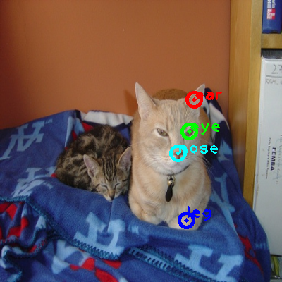 2008_001792-cat_0_ppm10.png