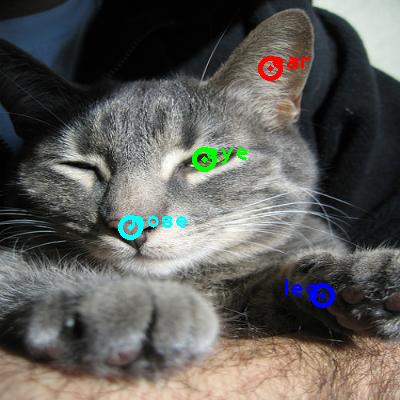 2008_002004-cat_0_ppm10.png