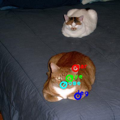 2008_002410-cat_0_ppm10.png