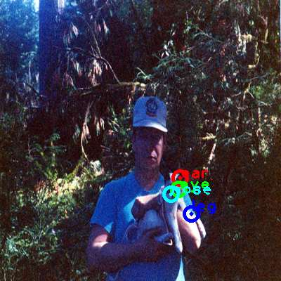 2008_003231-cat_0_ppm10.png