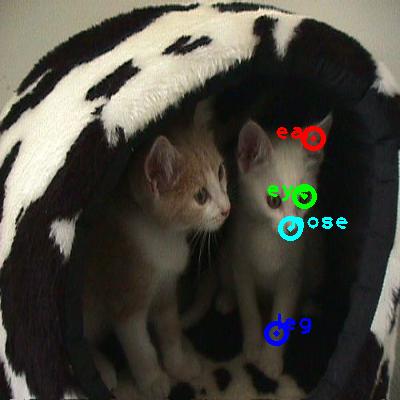 2008_003772-cat_0_ppm10.png