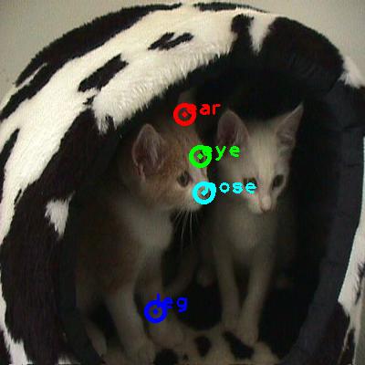 2008_003772-cat_1_ppm10.png