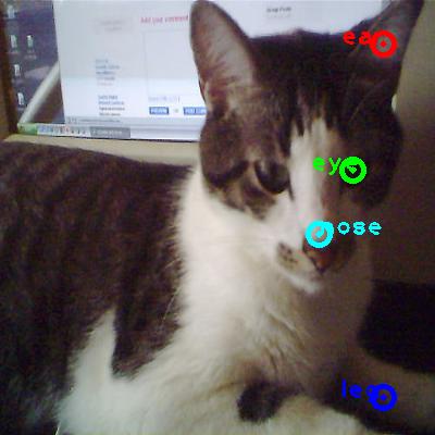 2008_004006-cat_0_ppm10.png