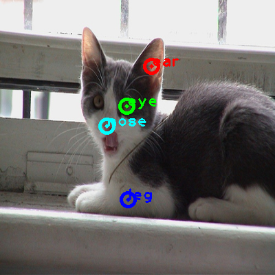 2008_004232-cat_0_ppm10.png