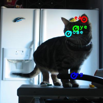 2008_004290-cat_0_ppm10.png