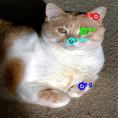 2008_004347-cat_0_ppm10.png