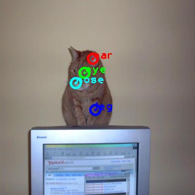 2008_005064-cat_0_ppm10.png