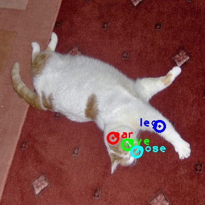 2008_005300-cat_0_ppm10.png