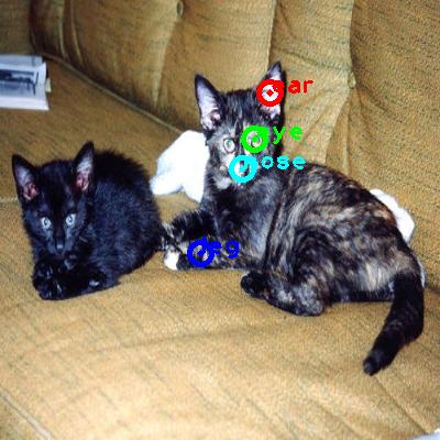 2008_005463-cat_0_ppm10.png