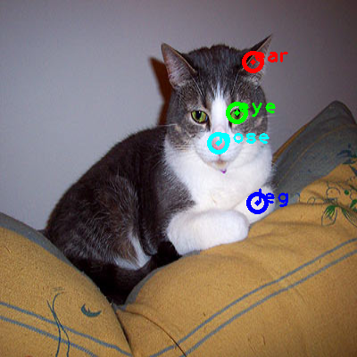 2008_005636-cat_0_ppm10.png