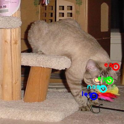 2008_005657-cat_0_ppm10.png