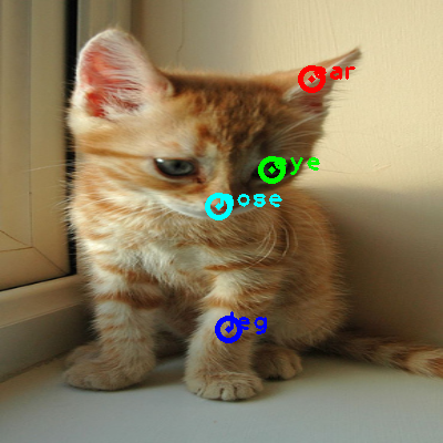 2008_005735-cat_0_ppm10.png